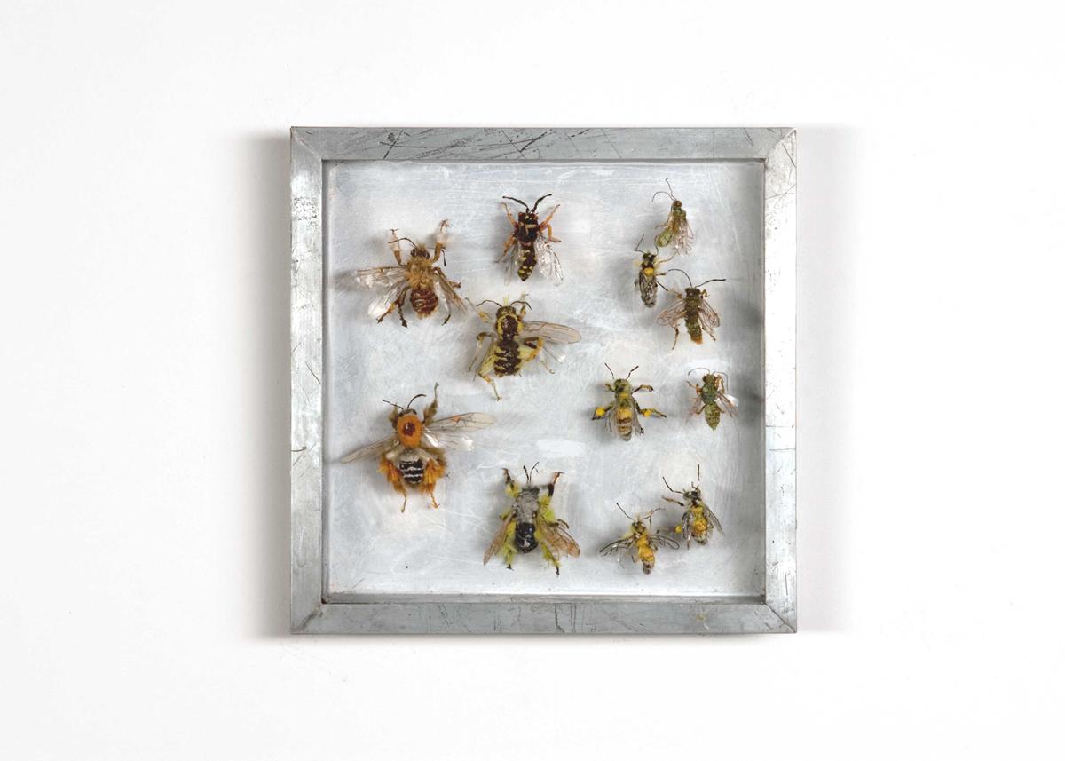 Bijen, Collectie VI Handgebreid, in zinken doos van 20-20 cm_1200