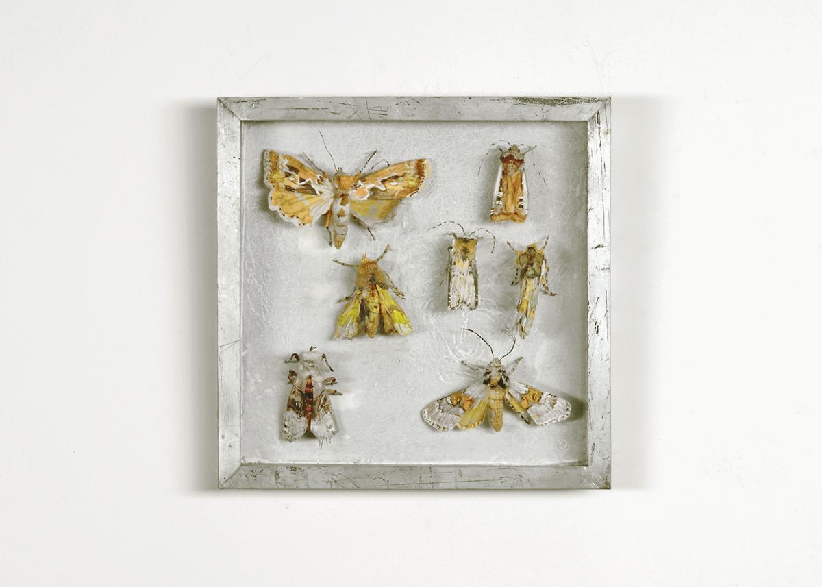 Collectie IV Uilen Handgebreid, in zinken doos van 20-20 cm_1200
