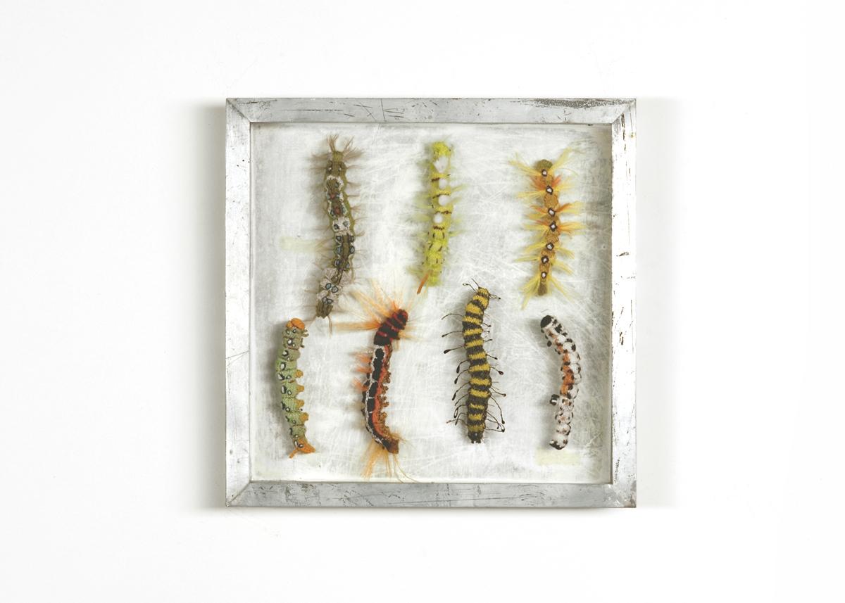 Rupsen Collectie II Handgebreid, in zinken doos van 20-20 cm