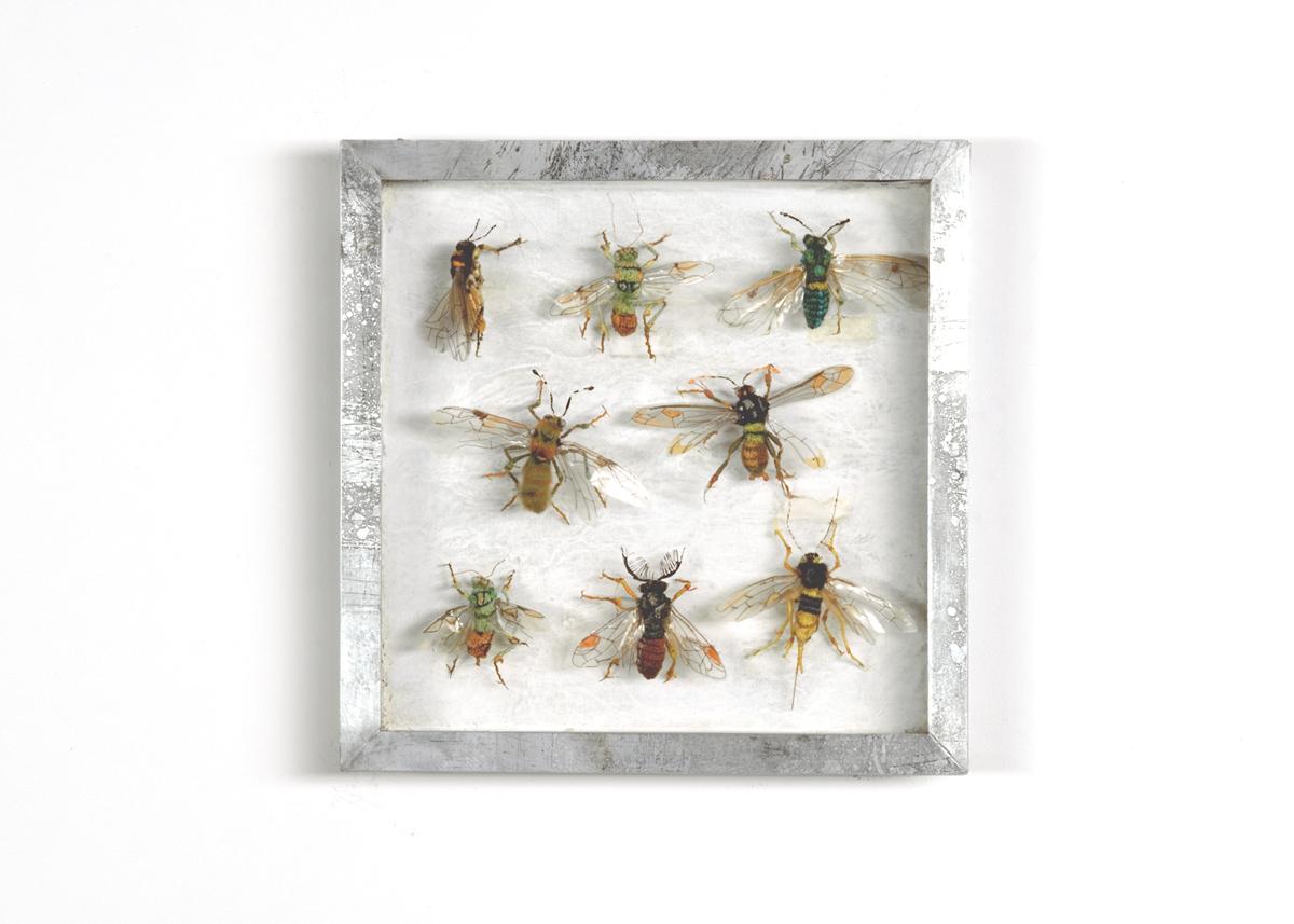 Wespen Collectie II Handgebreid, in zinken doos van 20-20 cm