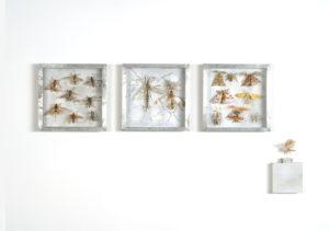 Collectie III Wespen langpootmuggen en spanners Handgebreid Materiaal garen dun ijzerdraad cellofaan gouache zink