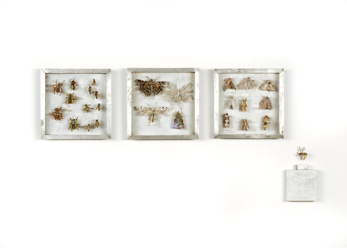 Collectie VI Bijen, vedermotten en grasmotten. Handgebreid Materiaal_ garen, dun ijzerdraad, cellofaan, gouache, zink. Totale opstelling achter een plexiglasplaat van 108-50 cm