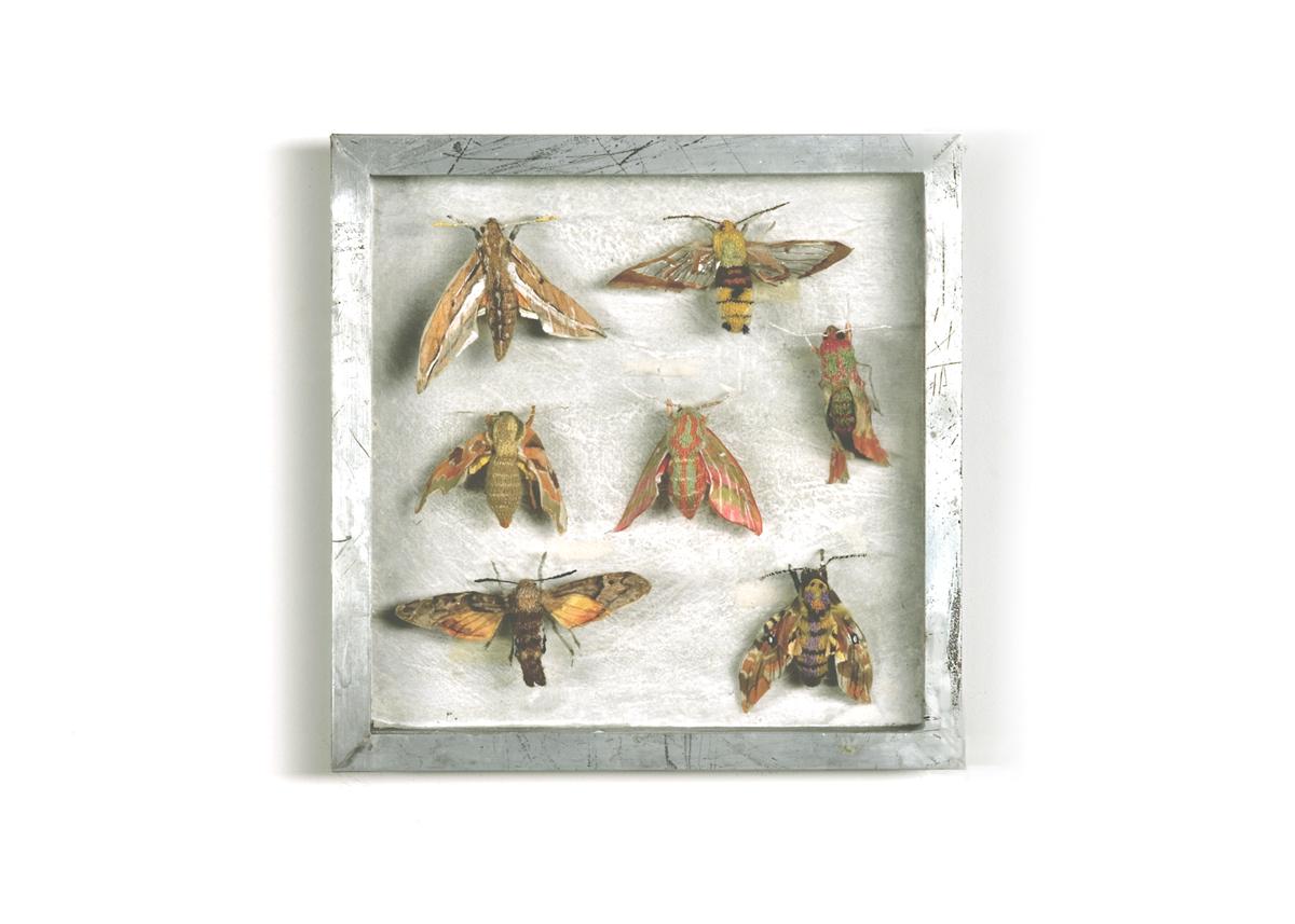 Pijlstaarten Collectie II Handgebreid, in zinken doos van 20-20 cm