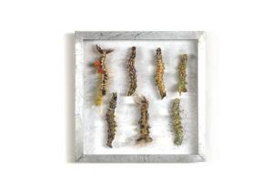 Rupsen, Collectie V Handgebreid, in zinken doos van 20-20 cm.